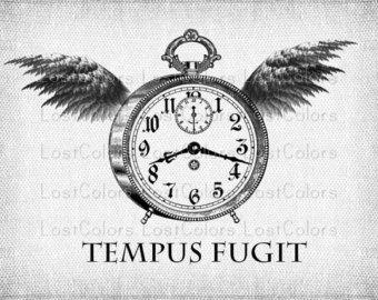 Afbeeldingsresultaat voor tempus fugit